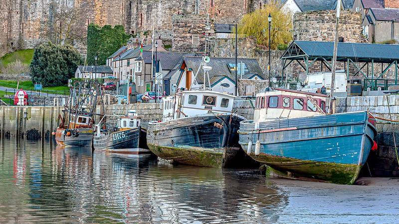 Conwy Fleet