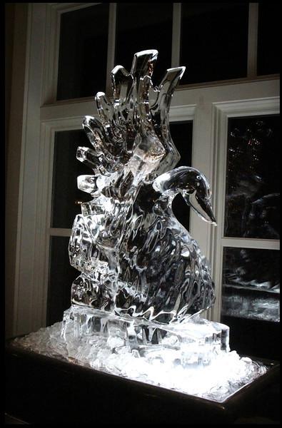 The Ice Bird