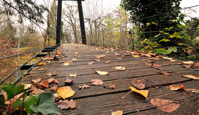 Oregon bridge in fall