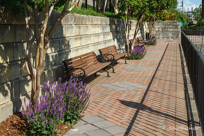 Benches & flowers, Canal Walk, Brown's Island, across from stone RR bridge piers