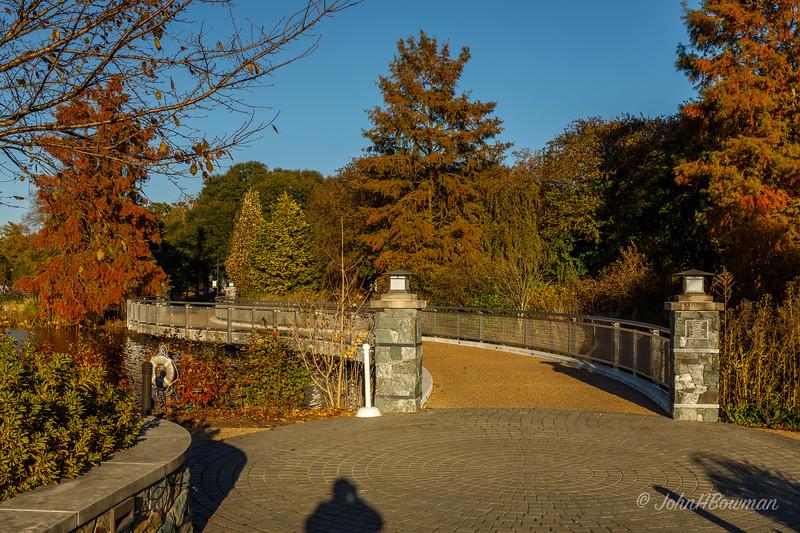 Lotus Bridge from Rose Garden End