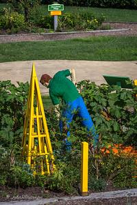 Garden Worker, Children's Garden Area