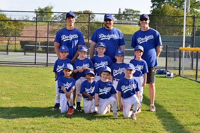 Tee Ball Teams