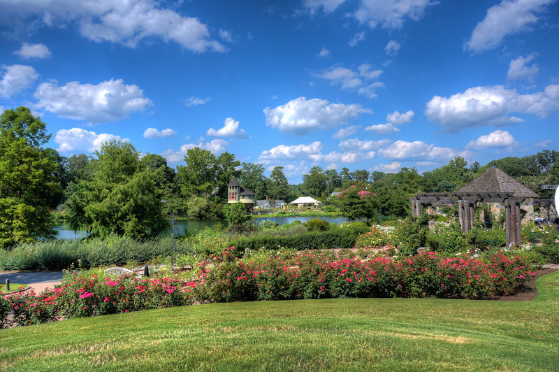 Lewis Ginter Flowers and Pond