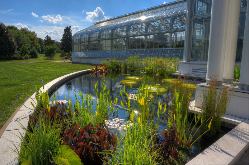 Lewis Ginter Lily Pond and Conservatory