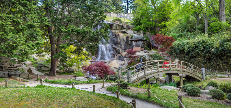 Spring Japanese Garden Bridge and Waterfall