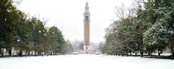 Carillon Snow
