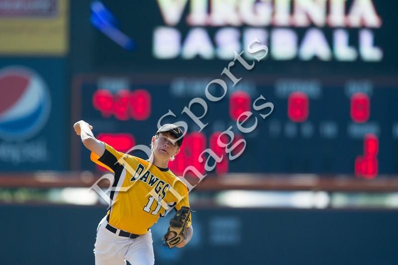 2013 Pittsburgh Diamond Dawgs 16 Gold