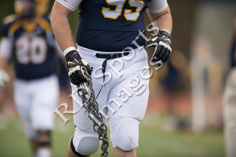 2014-CFB-DePauw at Allegheny-6