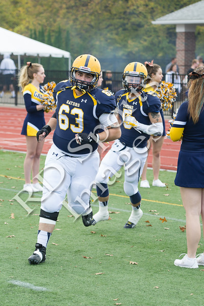 2014-CFB-DePauw at Allegheny-16