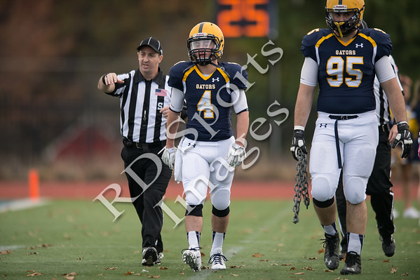 2014-CFB-DePauw at Allegheny-4