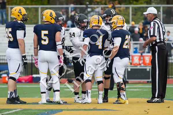 2014-CFB-DePauw at Allegheny-11