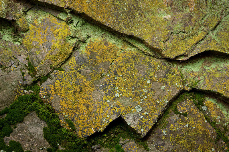 Earth Textura-2
