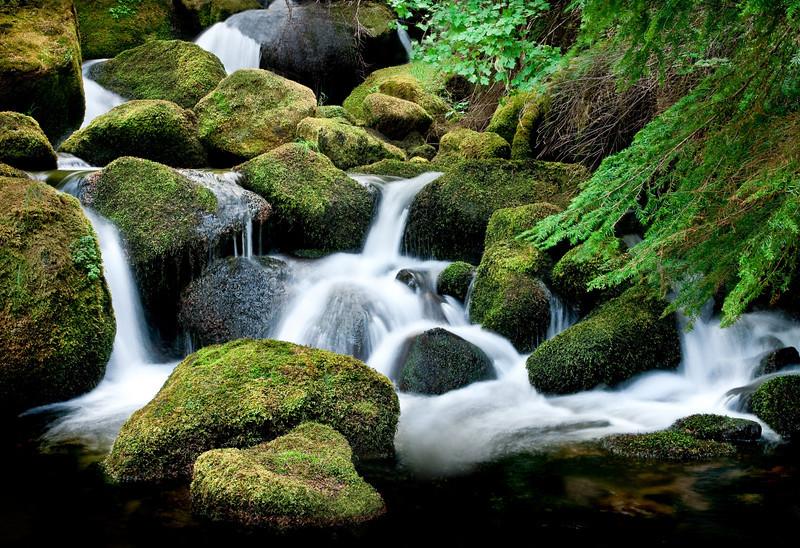 Watson Creek, Falls, OR