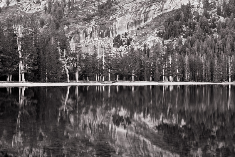 Lake Tenaya Reflections - Yosemite NP