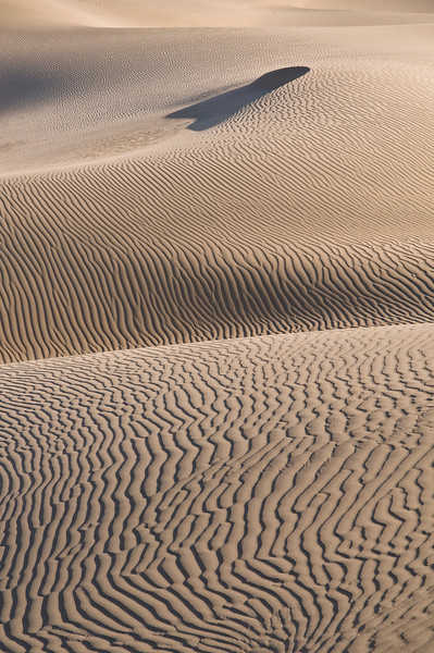 Death Valley Dunes -3