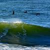 Pelicans/Cresting Wave