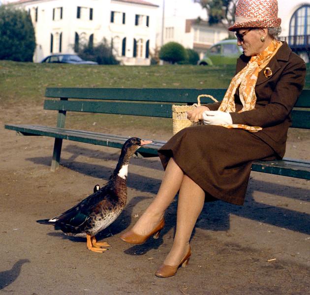 Duck Woman (#113)
