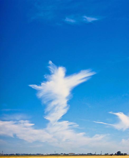Ballet Cloud (#105)