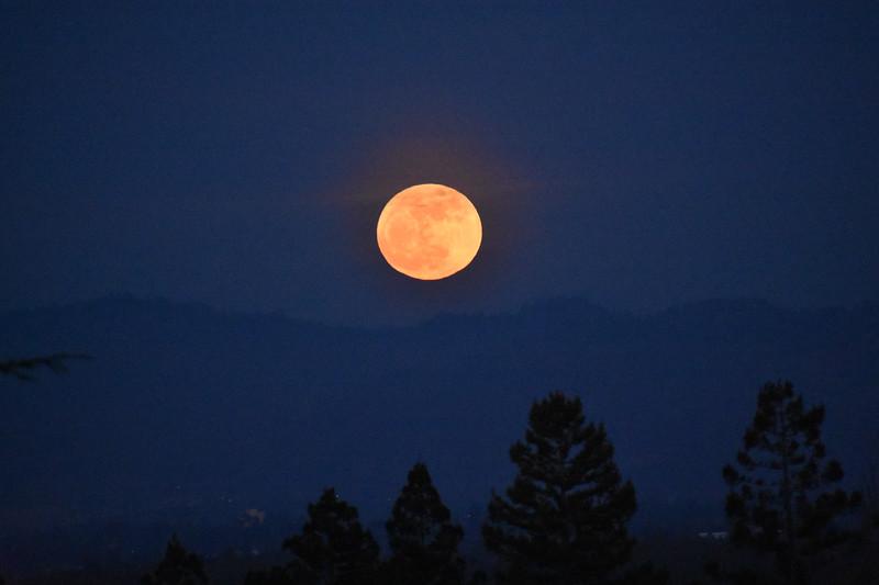 Blue Mountain Moon (# 108.5)