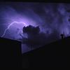 Dog Lightning