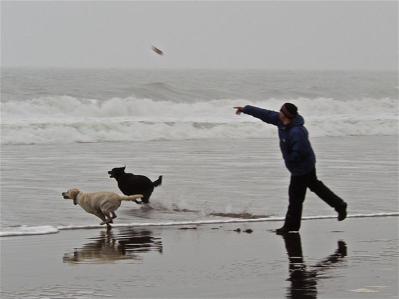 Beach Dogs (#106)