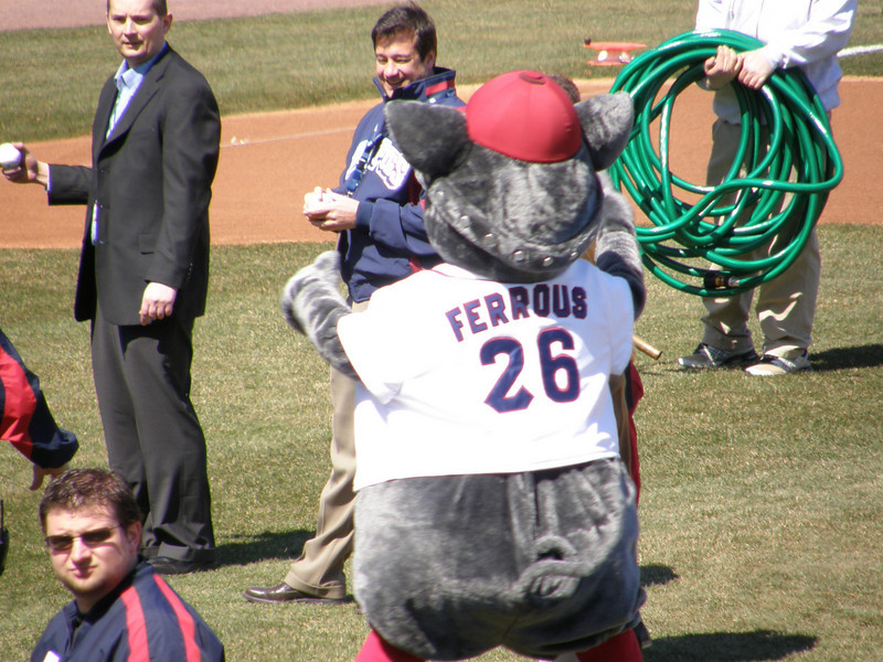 Ferrous the Fighting Pig!