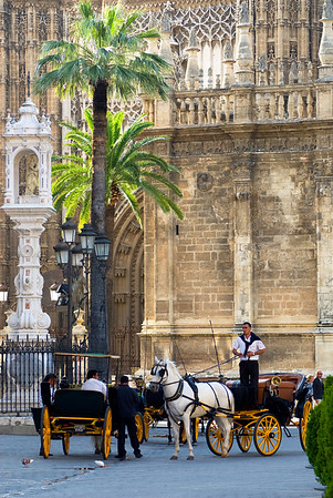 Carriage driver in Seville, Spain