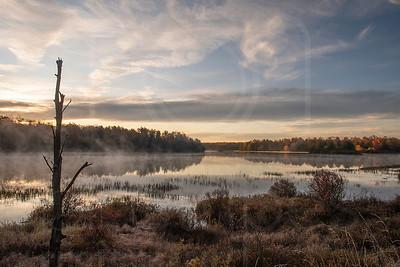 Lake Jean-DSC_7463 (1)