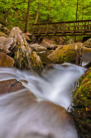 Cascade and Bridge at Ricketts Glen State Park, Pennsylvania