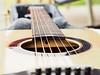 guitar_web-9