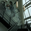 Carol Harper — The Morning Journal <br> A stairway at Riddell includes a wall of windows and a quarterback pocket graphic.