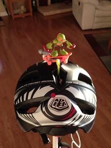 2015 01-11 Ninja helmet