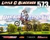 Blackmer 573