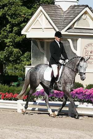 Boyd Martin Young Event Horses 2007