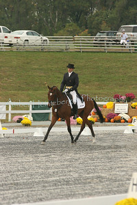 Fair Hill Dressage 060