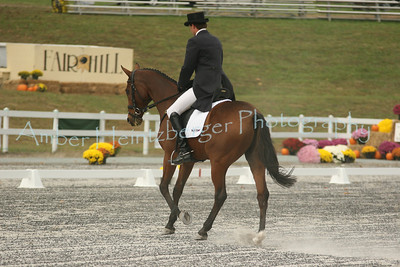 Fair Hill Dressage 079