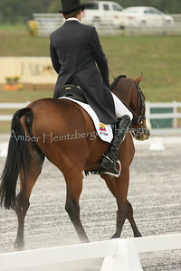 Fair Hill Dressage 057