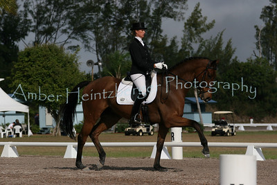 Palm Beach Dressage Derby 250