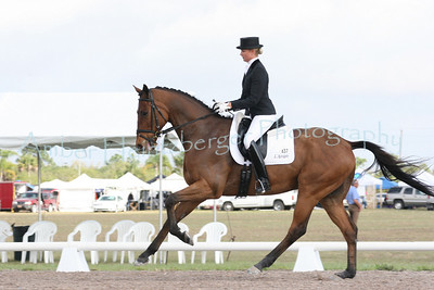 Palm Beach Dressage Derby 281