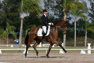 Palm Beach Dressage Derby 247