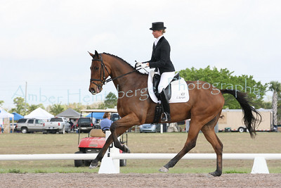 Palm Beach Dressage Derby 280