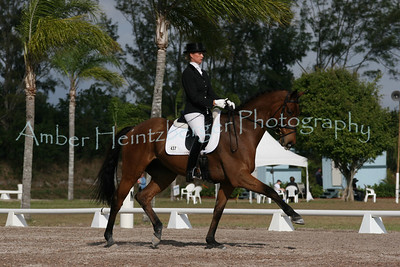 Palm Beach Dressage Derby 249