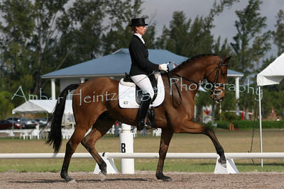 Palm Beach Dressage Derby 252