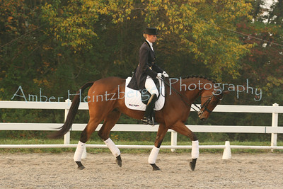 Fair Hill Dressage 991