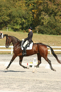 Fair Hill Dressage 1088