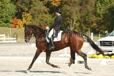 Fair Hill Dressage 1104