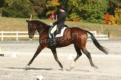 Fair Hill Dressage 1105