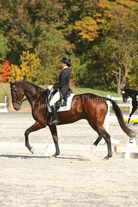 Fair Hill Dressage 1086