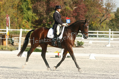Fair Hill Dressage 1078